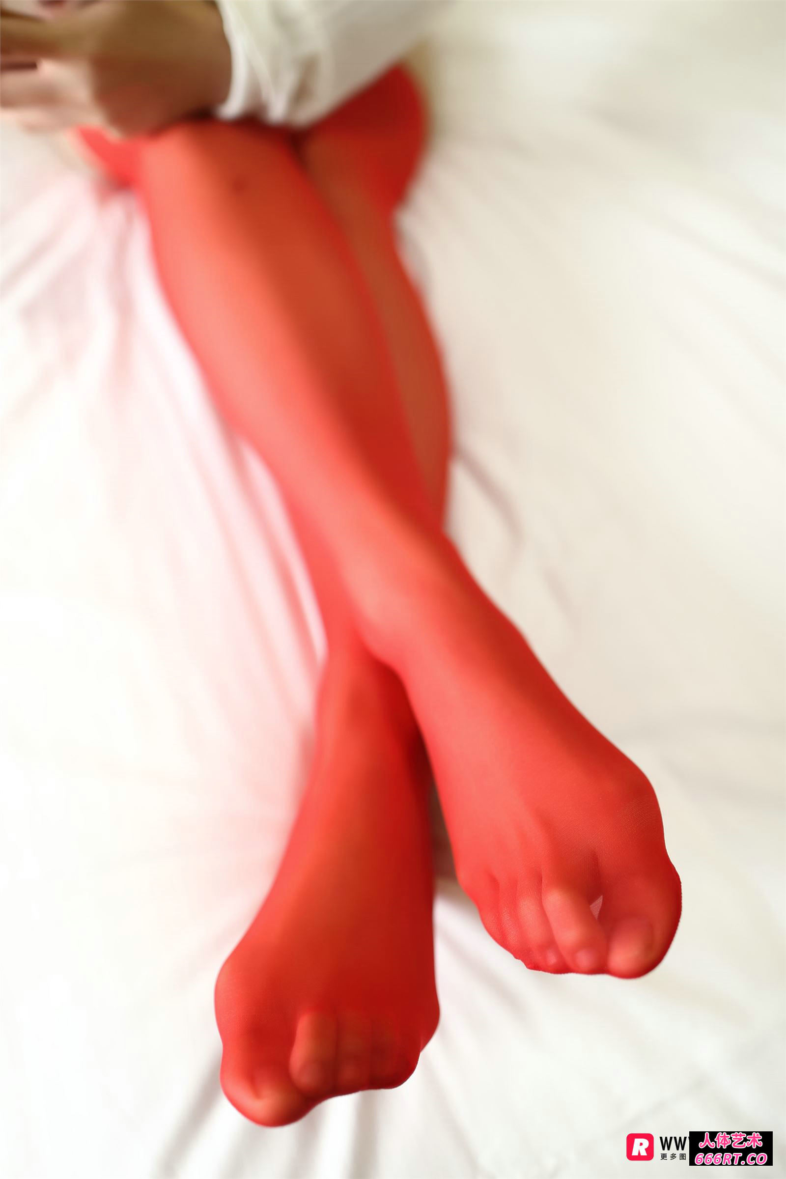 [ROSI摄影]NO.2218红色肉丝性感内衣美人